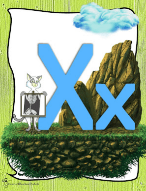 FREE Letter X Activities