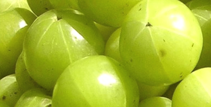 The Benefits of Ayurvedic Medicine: Amla