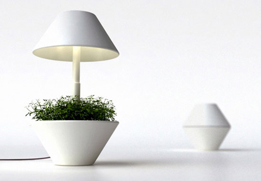 lightpot-ed03