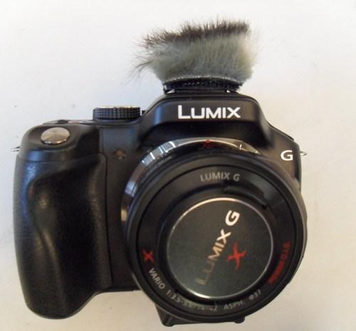 melena cámara