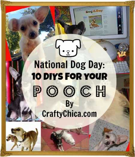 diy-ideas-for-dogs