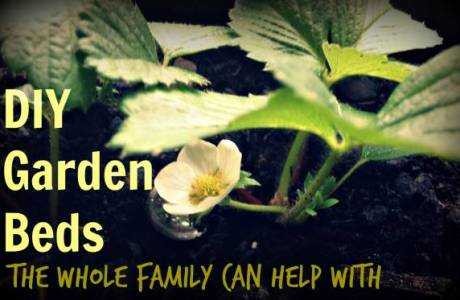 DIY Garden Beds the Whole Family Can Help With