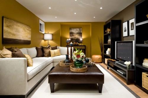 Medium Of Small Living Room Design Idea