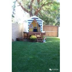 Small Crop Of Building Backyard Fun