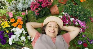 beautiful-flower-garden-1