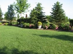 Small Of Landscape Design Ideas For Backyard