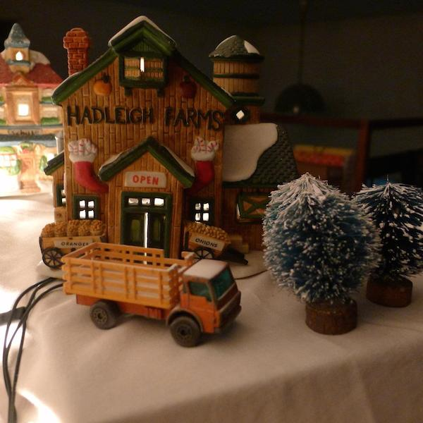 Homemade Parties Christmas House13