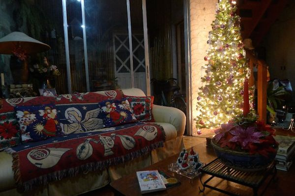Homemade Parties Christmas House36