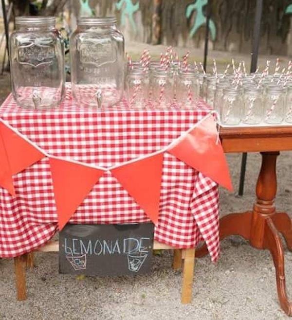 Homemade Parties_DIY Party_Barnyard_Miggy03