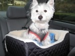 best-dog-booster-car-seats