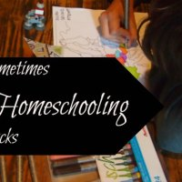 Sometimes Homeschooling Sucks
