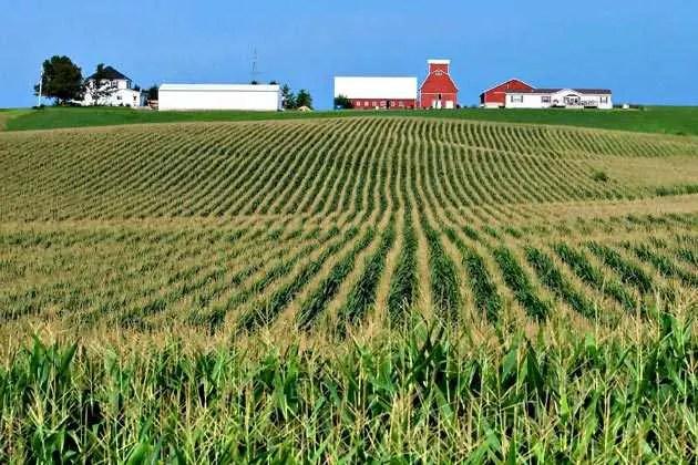 iowa-farmland
