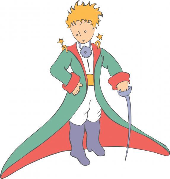petit prince cape 1