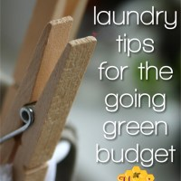 Eco laundry tips for the going green budget