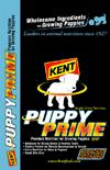 puppyprime-sm