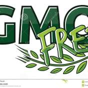 gmo-free-label-vector-illustration-34552481