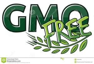 gmo-free-label-vector-illustration-34552481