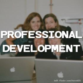 profes-development-thumb(colorless)