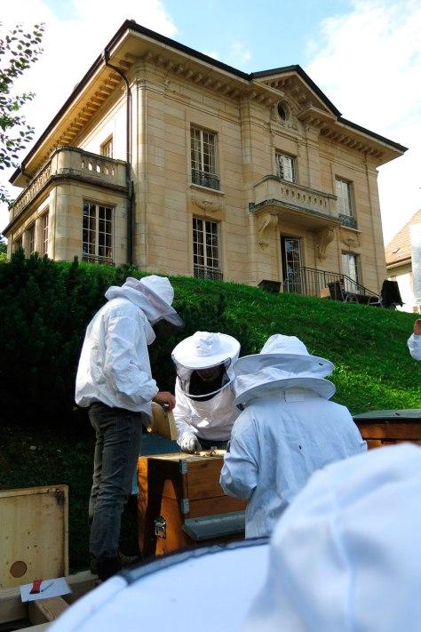 Apicultores trabajando en los panales delante del Museo de Girard-Perregaux
