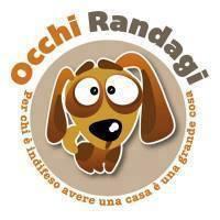 OCCHI RANDAGI1