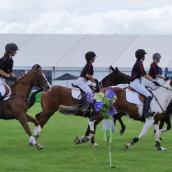 Canterbury won the Saba Sam shield at the Horse of the Year show today.