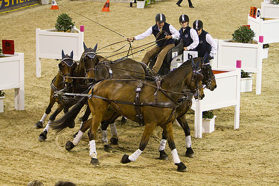 Boyd Exell was in top form in Hannover, winning the first leg of the FEI World Cup Driving's 12th season.