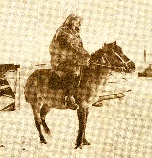 German Long Rider Alfred Kling exercises his happy horse, Moritz, in Antarctica.