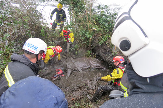 Rescuers work to get strops around Chant before getting her out of the ditch.