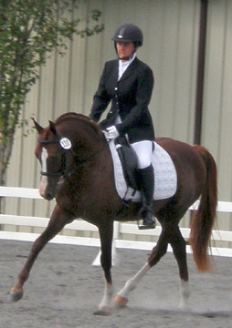 Training Level Dressage test in 2010.