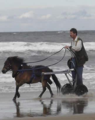 Simon Mulholland and the Saddlechariot.