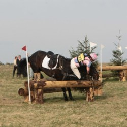 Eventing safety: A walk on the Wilde side