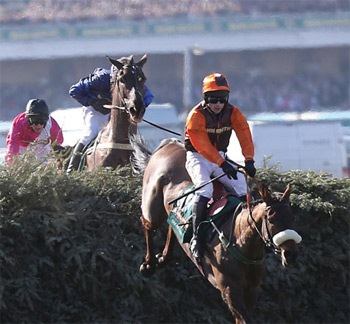 aintree-grand-national