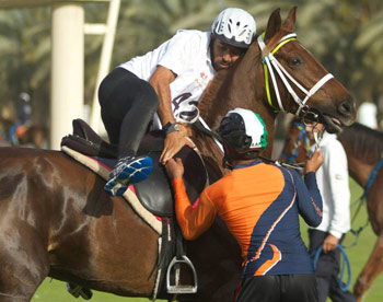 A runner switches to horseback during a transition during the Dubai Desert Marathon.