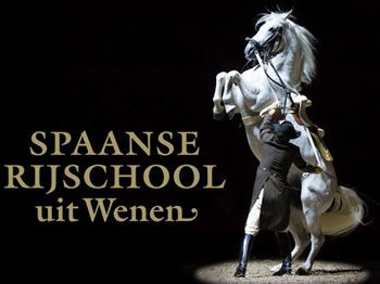 spanish-riding-school