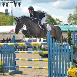 David Simpson and Arentos won the Ladies and Gentleman's Jumping Competition.