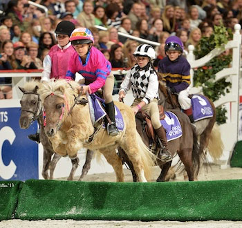 The 2014 WIHS Shetland Pony Steeplechase Championship Series is being held at the Devon Horse Show on May 26 and at the Washington International Horse Show on Barn Night, October 23 and Grand Prix Night, October 25.