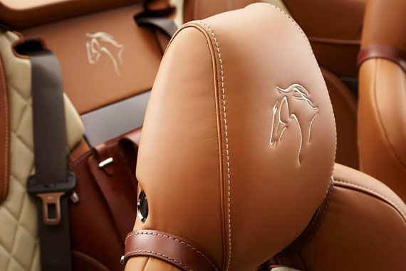 The equestrian theme of the custom Aston Martin extends to an embroidered horse logo on the front head rests and rear console.