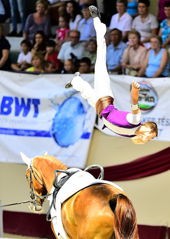 Balázs Bence scored Hungary's first vaulting Championships victory, and his first individual win, at the FEI European Vaulting Championships for Juniors 2014 in Kaposvár on Sunday.