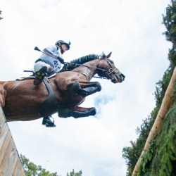 Germany's Klimke to kick on for Classics lead at Luhmühlen