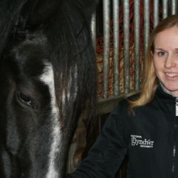 Exciting additions for Wales equine science degree course
