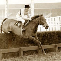 """Arkle Ale"" honours legendary Irish 'chaser"