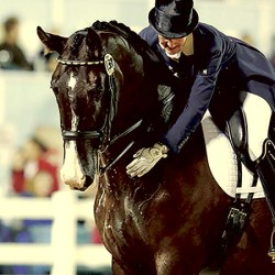 Olympic aims for dressage horse after major health scare