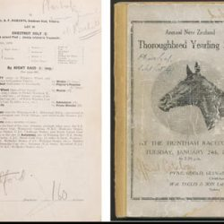 Phar Lap's NZ auction catalogue to be sold