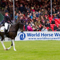 Badminton chooses equine welfare for 2016 charity