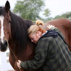 Video: Why horses make the best therapists