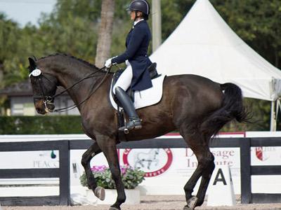 Ann Romney: How horses helped my multiple sclerosis battle