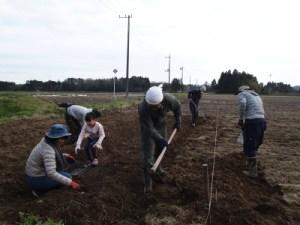広い畑もみんなでやればあっという間に作業が終わります。