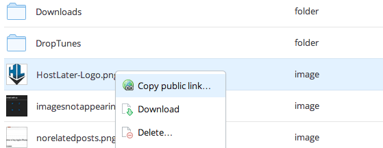Dropbox Custom Domain - Right Click Public File