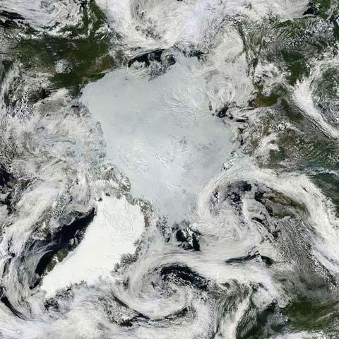 Arctic2013July14