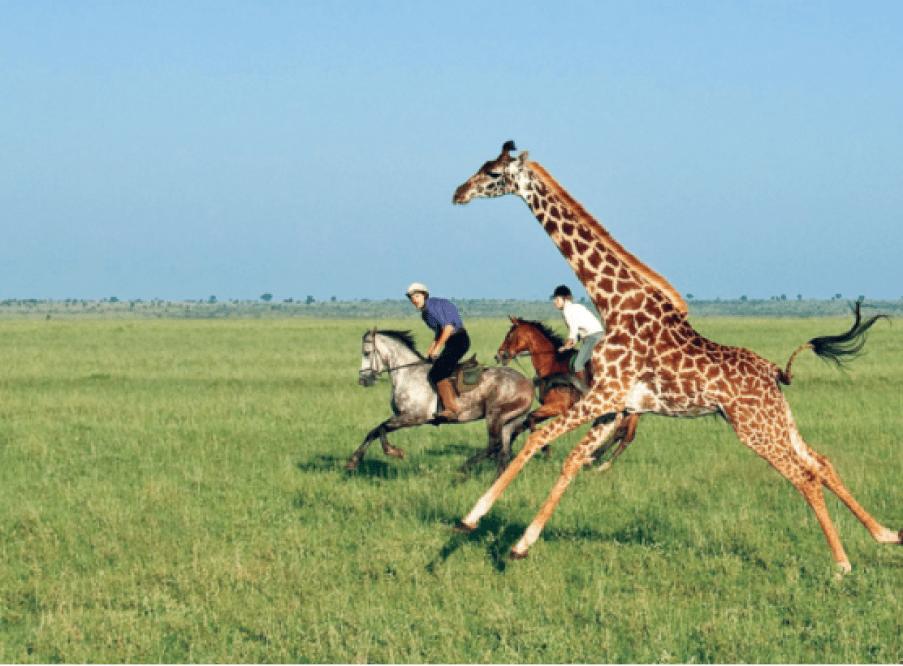 Ride Kenya, Africa.